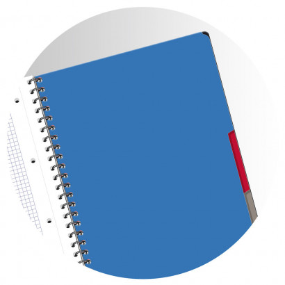 OXFORD ETUDIANTS Cahier MULTINOTES - A4+ - Couverture polypro - Double spirale - Ligné 7mm - 160 pages - Compatible SCRIBZEE® - Couleurs assorties - 400114580_1100_1553285282 - OXFORD ETUDIANTS Cahier MULTINOTES - A4+ - Couverture polypro - Double spirale - Ligné 7mm - 160 pages - Compatible SCRIBZEE® - Couleurs assorties - 400114580_2300_1553284678