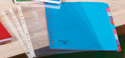 Oxford Campus Plastic Folders and Dividers